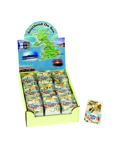 Assorted Genuine Sea Shells in Acetate Box