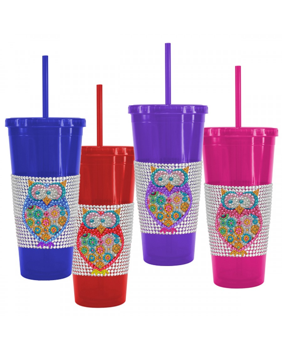 24oz Owl Bling Design Tumbler W/Straight Straw