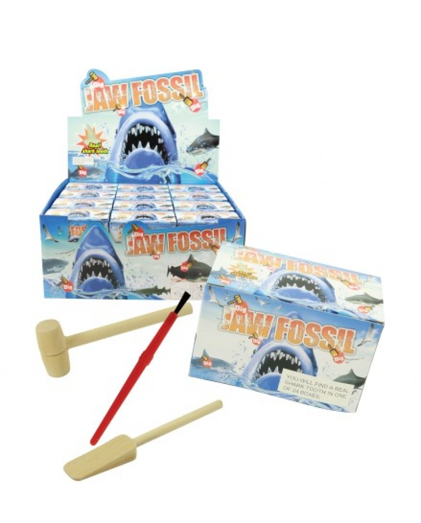 Jaws Fossil Dig Kit