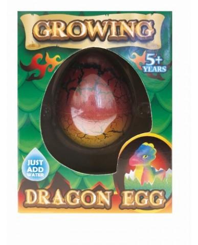 Dragon Hatch Egg