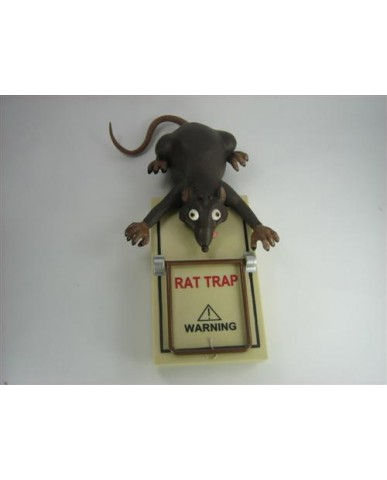 Rat in a Trap